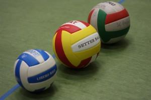 Alle Volleybälle im Vergleich